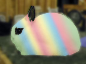 multicolored rabbit rainbow